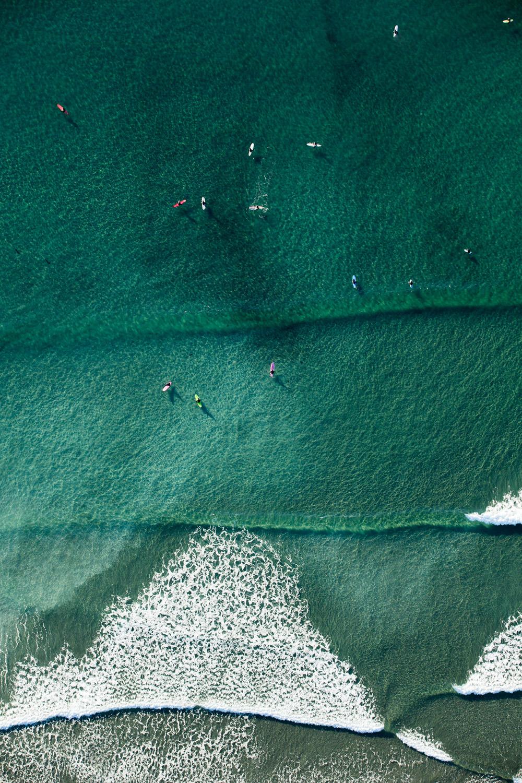 AF9R7461-SURFER CANDY-1000x1500