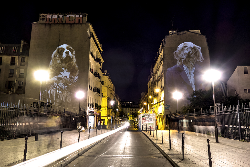 Street Mapping By Julien NONNON Le Setter et le Cavalier King Charles - Paris FRANCE - Juin 2015